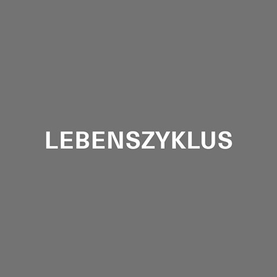 Livit-Real-Estate-Management-Lebenszyklus